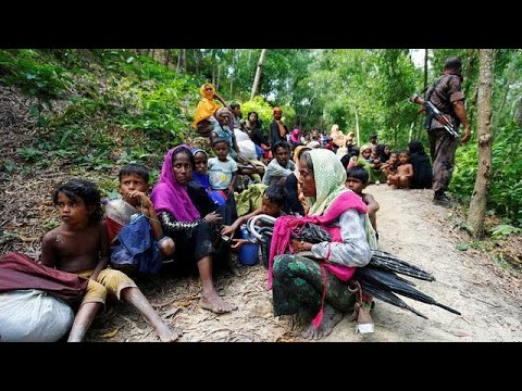 Rohingya Muslims flee Myanmar for Bangladesh