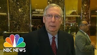 Mitch McConnell: Donald Trump