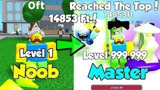 I Reached The Top 14,853 Ft! Got Best Belt & Pets! - Ninja Simulator