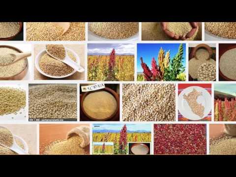 Beneficios de la quinoa para bajar de peso