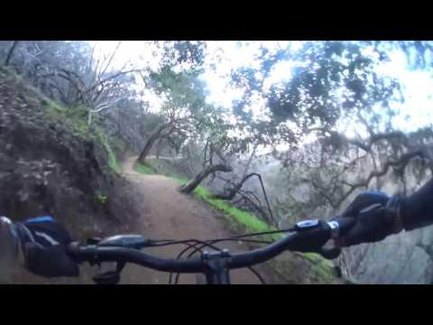 Betty Dearing Downhill - Hollywood - Mountain Biking