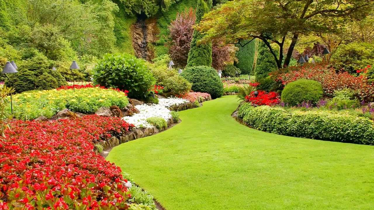 images of low maintenance gardens with Watch on Rain Gardens Bioswales besides Biodiversity 45517022 also Service Garden Walls furthermore Gardens moreover Cs 5ways Garden With Pond.