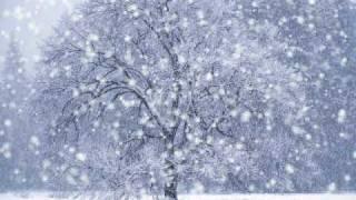 Тоника - Зима