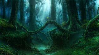 Celtic Music - Wild Woods