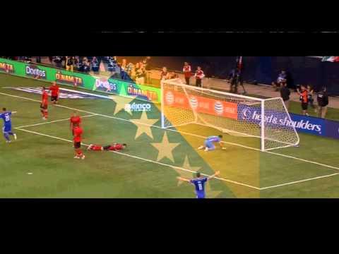 BOSNIA & HERCEGOVINA WORLD CUP 2014
