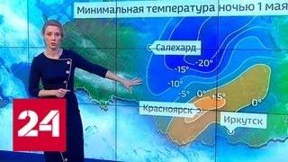 """""""Погода 24"""": в Сибири продолжает бушевать снежный шторм - Россия 24"""