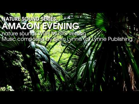 Amazon Evening - Nature Sounds With Music - Relaxation, Exotic