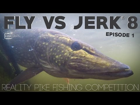 Fly vs Jerk 8 - EPISODE 1 - Kanalgratis.se (with German, French & Dutch subtitles)