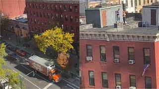 Usa 2020, caroselli, bandiere e gente sui tetti: così New York festeggia la vittoria di Biden