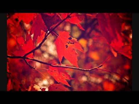 Stoa  Autumn