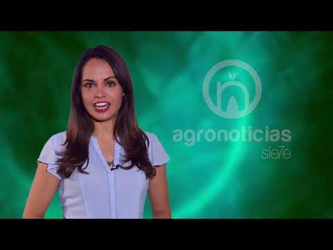AGRONOTICIAS sie7e PROGRAMA 69