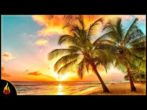 Island Reggae Music   Upbeat Tropics   Tropical Island Beach Music