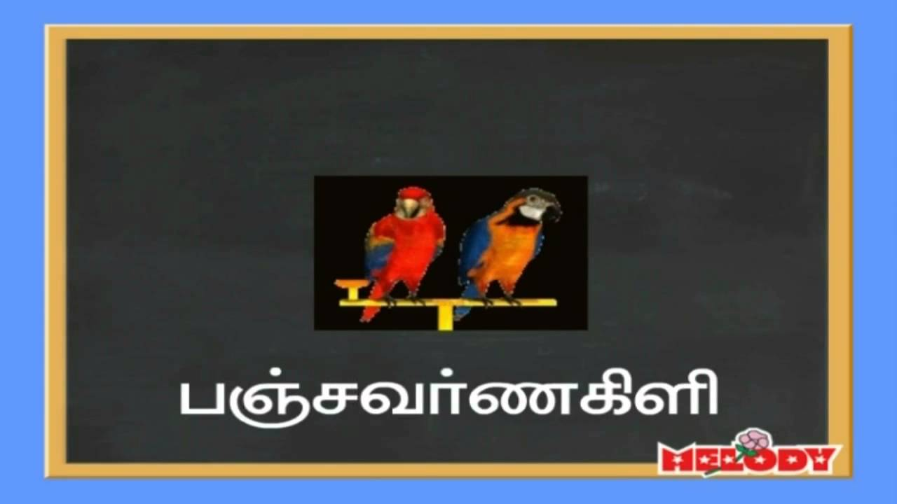 Name of Birds in Tamil Language - பறவைகள்