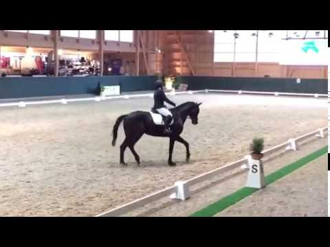 Ga06 Dressage Masters Dielsdorf 0317 Youtube