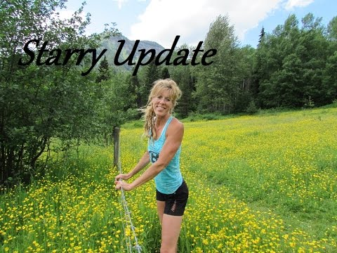 Starry Talks: Update On Daily Life So Far