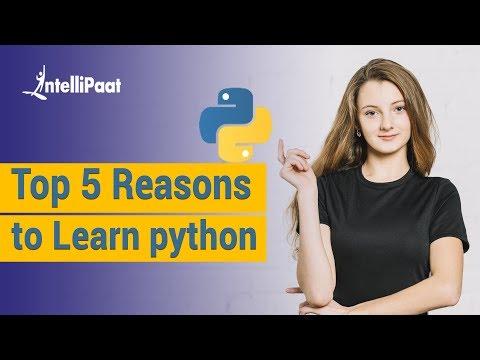 Top 5 Reasons to Learn Python | Python Programming Tutorials thumbnail
