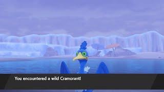 How to Catch Cramorant - Pokémon Sword & Shield