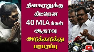TTV Dinakaran gets support from 40 MLAs - 2DAYCINEMA.COM