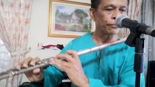 GERIMIS SENJA ALLEYCATS Flute cover