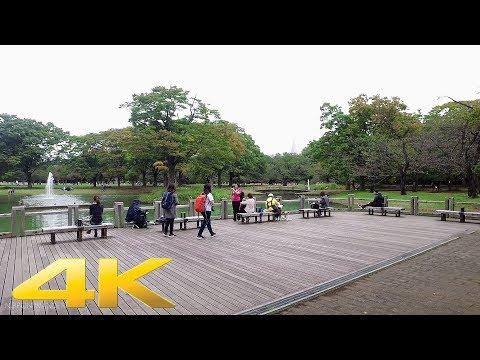Walking around Yoyogi Park, Tokyo and bike riding - Long Take【東京・代々木公園】 4K