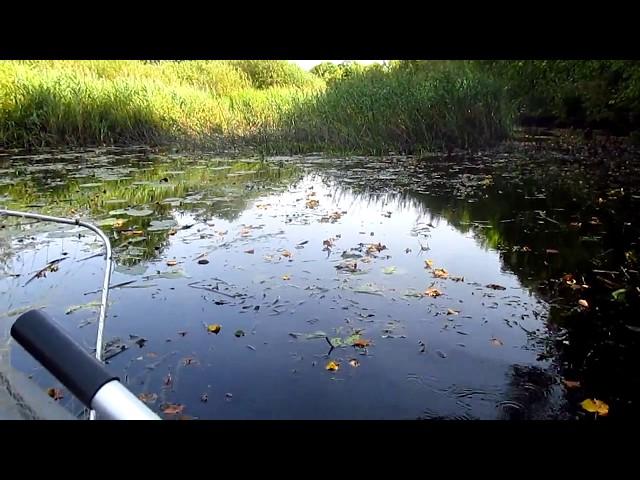 Непонятная ушатанная речка(((