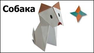 Оригами собака: видео мастер-класс