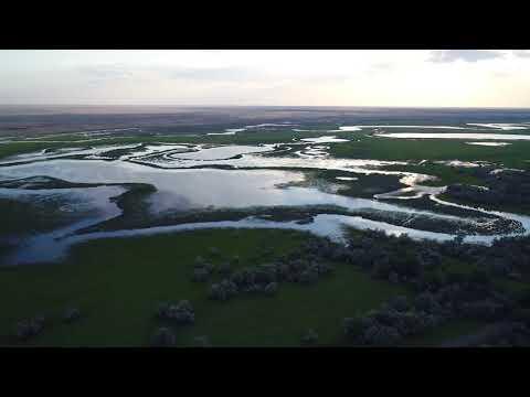 Астраханская область, Соленое Займище