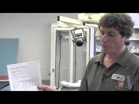 Why Math? - Episode 9 - Toronto Zoo Veterinary Science
