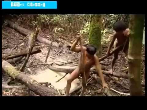 Cara Menangkap Ikan Suku Aborigin