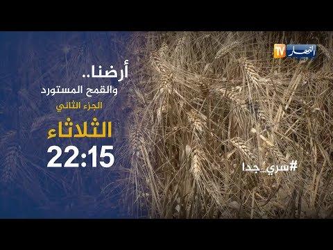 """سري جدا: أرضنا والقمح المستورد """"الجزء الثاني"""".. تأتيكم الثلاثاء 22:15"""