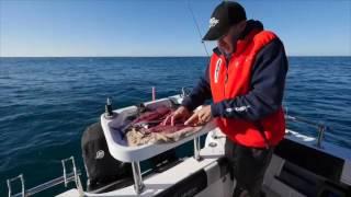 Fishing Tip - Fresh strip bait on two hook rig