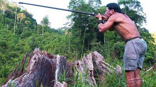Borneo Death Blow   Full Documentary