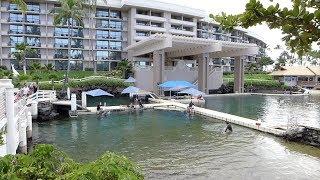 Waikoloa Village, Hawaii - Hilton Waikoloa Village - Full Tour (2018)
