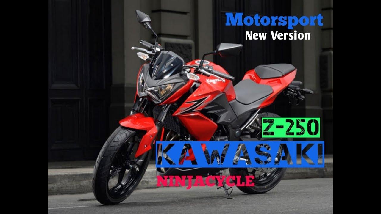 Kawasaki Z250sl 2020