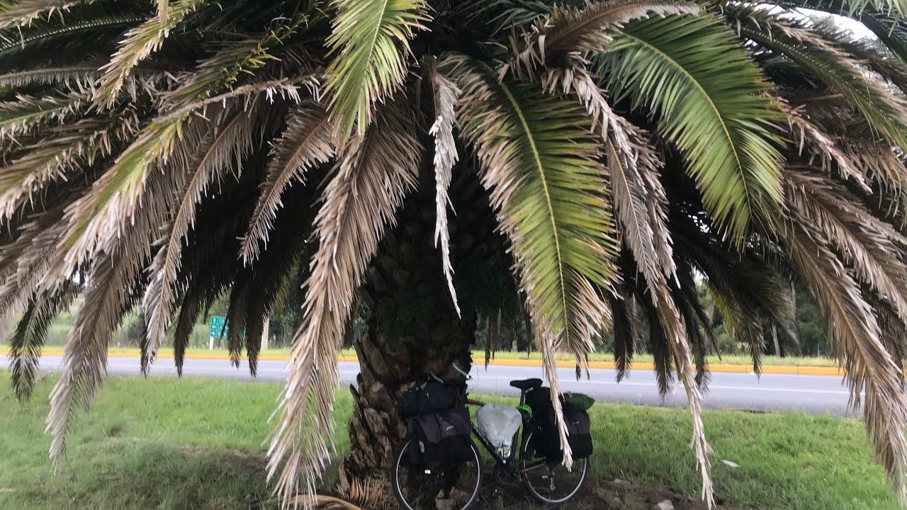 Bisiklet ile Dünya Turu  Uruguaya  Feribot ile Geçiş  Buenos Aires  Colonia Del