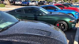 19 Mustang Bullitt & GT/CS