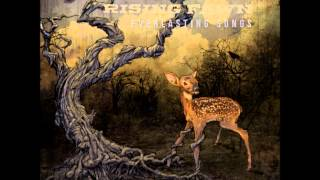 Rising Fawn - Stay Focused