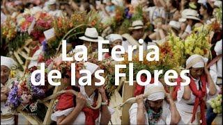 La Feria de las Flores en Medellín   Alan por el mundo Colombia #12