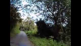 Chalakudy - Malakkappara - Drive through Athirapilly Forest , Thrissur - Kerala