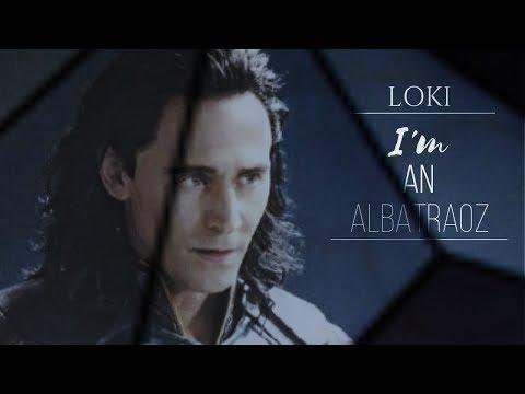Loki I'm An Albatraoz
