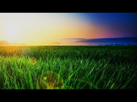 Mindfulness Relaxing Music for Stress Relief. Healing Piano Music for Meditation, Sleep, Spa