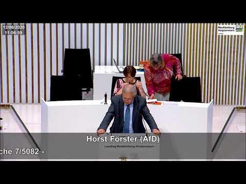 Horst Förster: Barbara Borchardt - Dieser Skandal soll damit ersichtlich verschleiert werden!