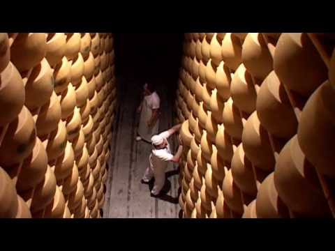 The Making of Parmigiano Reggiano Cheese - Part 1