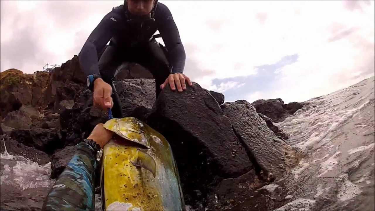 Spearfishing Hawaii Big Island