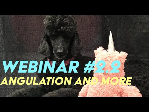Webinar #2.2: Increasing angulation, Removing Fuzz, Fixing Eye Stains, and More!