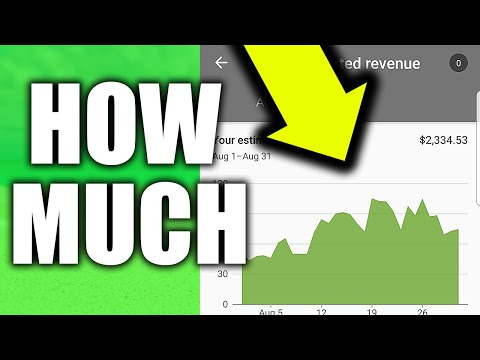 How Much Money Does My 20,000 Subscriber YouTube Channel Make?