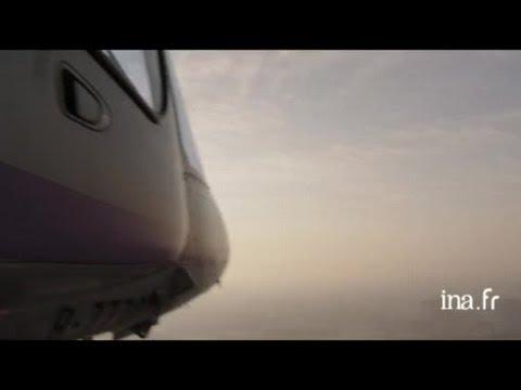 Chine, Shanghai : le port industriel et la zone littorale