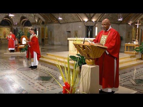 The Sunday Mass - Palm Sunday - April 9, 2017