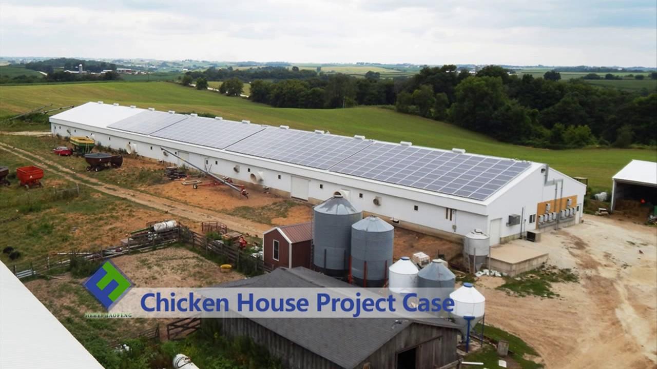 Poultry Farm Construction : Hebei baofeng poultry farm building youtube