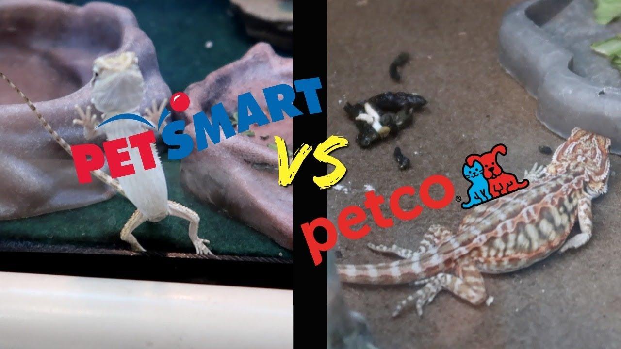 petsmart vs petco who